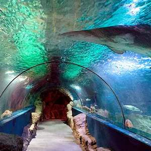 Aquarium in Almunecar Spain